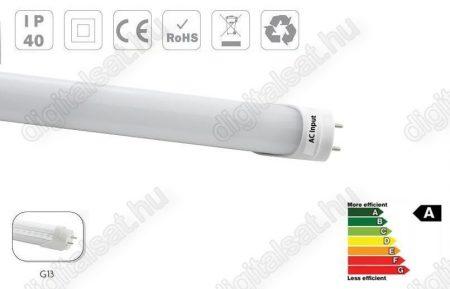 LED fénycső T8 60cm 9W hideg fehér opál búrás