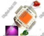 Növény nevelő, növény termesztő LED-ek